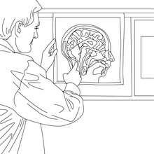 Dibujo de un neurologo para colorear - Dibujos para Colorear y Pintar - Dibujos para colorear PROFESIONES Y OFICIOS - Dibujos de MEDICO para colorear