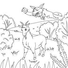 Dibujo para colorear : La Cabra y el Lobo
