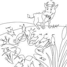 Fabula LA RANA QUE PRETENDIA IGUALARSE AL BUEY para colorear - Dibujos para Colorear y Pintar - Dibujos de CUENTOS para colorear - Cuentos y fábulas de Jean de LA FONTAINE para colorear