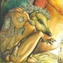Juan mi Erizo - Lecturas Infantiles - Cuentos infantiles - Cuentos clásicos - Los cuentos de Grimm