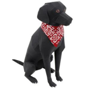 Labrador 3D