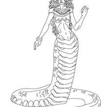 Dibujo para colorear : EQUIDNA , criatura mitad mujer y mitad serpiente