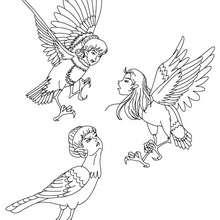 Dibujo para colorear : las ARPIAS , criaturas infernales del Dios Hades