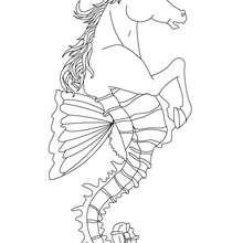 Dibujo para colorear : HIPOCAMPO , criatura mitad caballo y mitad pez