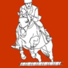 caballo, Las 3 DISCIPLINAS DE EQUITACION en los Juegos Olímpicos para colorear