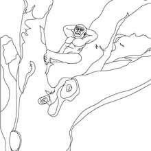 Dibujo de un AUSTRALOPITECO en un árbol - Dibujos para Colorear y Pintar - Dibujos para colorear HISTORIA - PREHISTORIA dibujos para colorear
