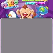 Descubre PetiZoo con Pingo, Changu y Kamu