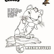 dibujo de MACAWNIVORE para pintar - Dibujos para Colorear y Pintar - Dibujos de PELICULAS colorear - Dibujos de LOS CROODS para colorear