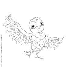 Dibujo para colorear PAJARO DE ZOU LA CEBRA - Dibujos para Colorear y Pintar - Dibujos para colorear PERSONAJES - PERSONAJES TV para colorear - Dibujos para pintar ZOU la cebra