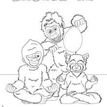 Dibujo para colorear : Gorila Blanco y sus amigos