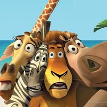 animales, Dibujos para colorear y pintar MADAGASCAR