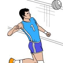 juegos olimpicos, Dibujos de VOLEIBOL para colorear