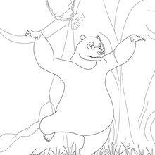 BALOO el oso