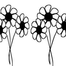 Flor N°27