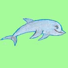 Aprender a dibujar : Delfín
