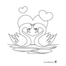 Dibujo para colorear : Cisnes Amor puro