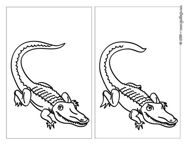 Juegos gratuitos de cocodrilo feroz - es.hellokids.com