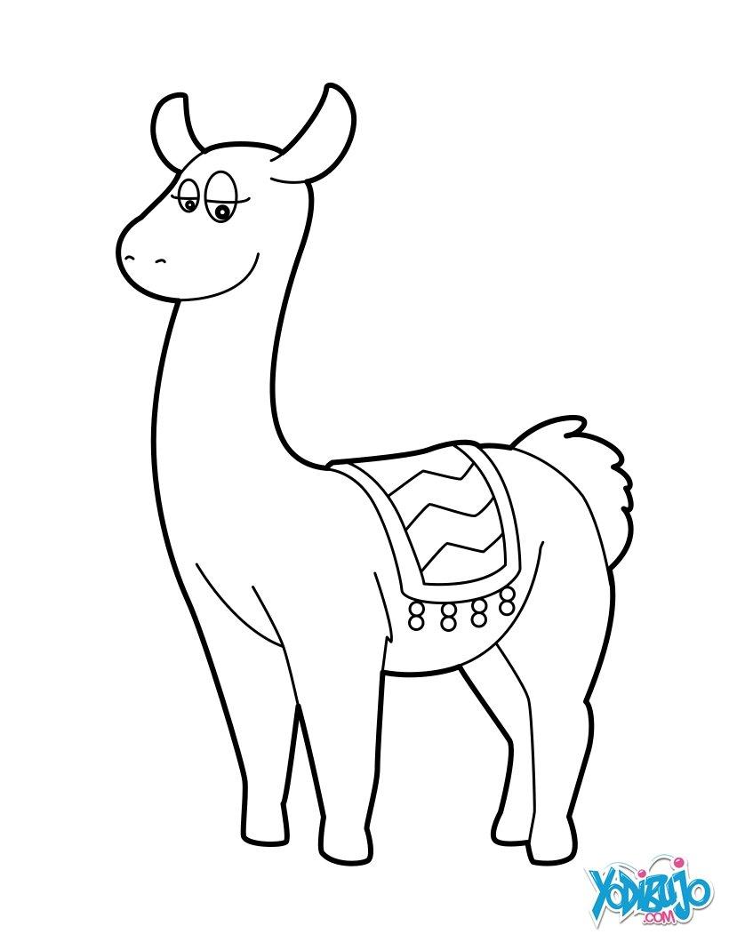 Dibujos para colorear lama - es.hellokids.com