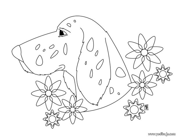 Dibujo para colorear : un perro Labrador