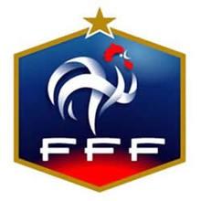 Rompecabezas  : Federación Francesa
