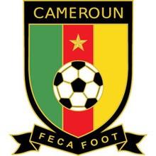 Rompecabezas  : Selección de Fútbol de Camerún