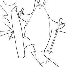 Dibujo para colorear : Pingüino de esquí