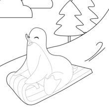 Dibujo para colorear : Pingüino haciendo trineo