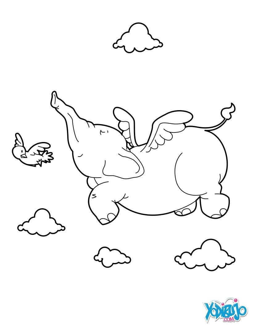 zancos volador: