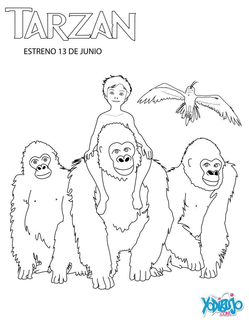 Dibujos De Gorilas. Dibujos Para Colorear De Gorilas. Fabulous Foto ...