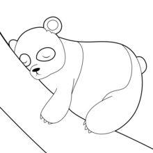 Dibujo para colorear : Oso Panda Durmido