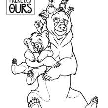 Dibujo para colorear : Los animales en Hermano Oso