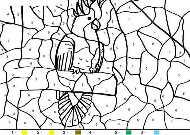 Juego infantil : Juego de pintar PAPAGAYO