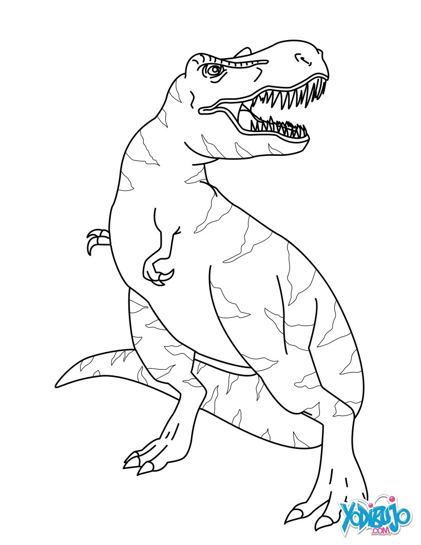 Dibujo para colorear : Tiranosaurio