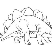 Dibujo para colorear : Estegosaurio armatus
