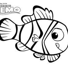 Dibujo para colorear : Buscando a Nemo