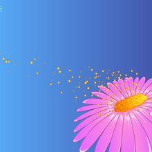 Fondo de pantalla : Flor y Polen