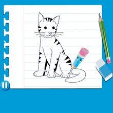 Consejo para dibujar : Dibujar un GATO