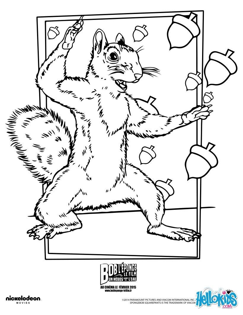 Dibujos para colorear arenita ardillas - es.hellokids.com