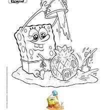 Dibujo para colorear : BOB ESPONJA a la playa