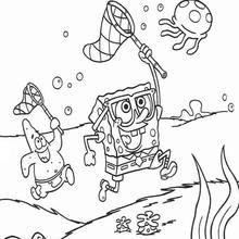 Dibujo para colorear : Busca medusas con Patricio Estrella