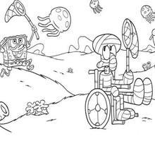 Dibujo para colorear : Calamardo con movilidad reducida