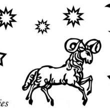 Dibujo para colorear : Aries