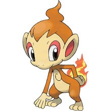Dibujo para colorear : Pokemon Chimchar