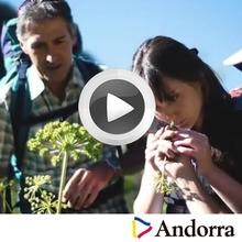 Un verano en Andorra