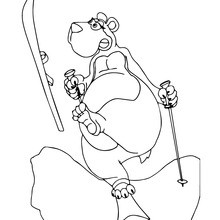 Dibujo para colorear : Oso pardo esquiando