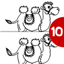 CAMELLO busca las 10 diferencias