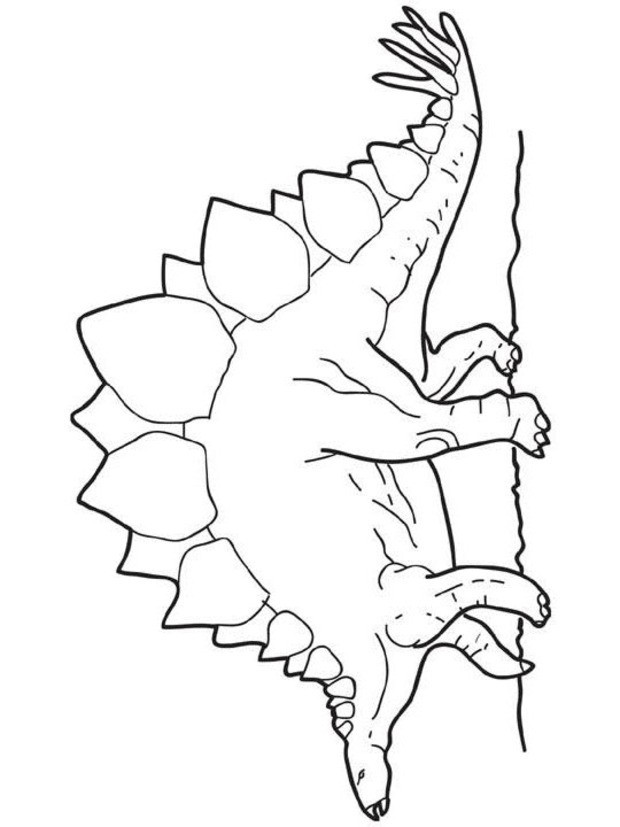 dibujos para colorear estegosaurio es hellokids