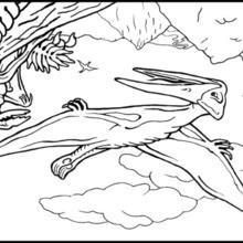Dibujo para colorear : Pterosaurio
