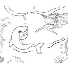 Dibujo para colorear : ZUMA el delfin