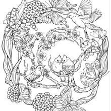 Dibujo para colorear : Mandala con estampados con las aves